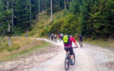 Bike tour Tržič cycling through forest