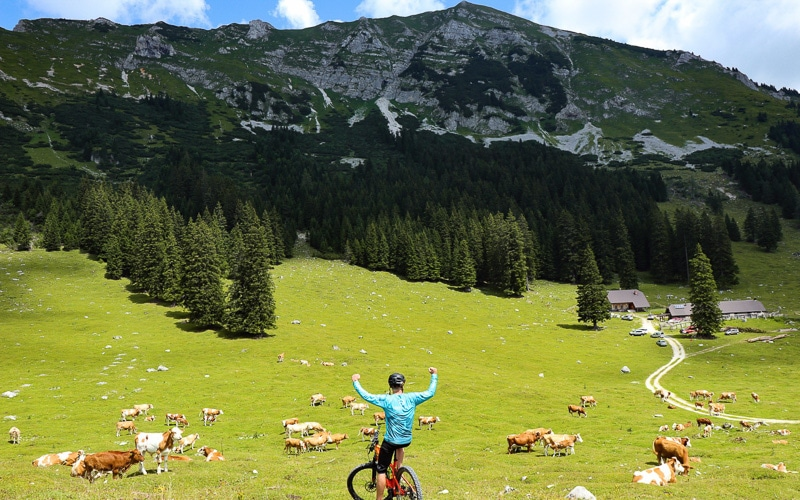 Mountain pastures above Tržič.