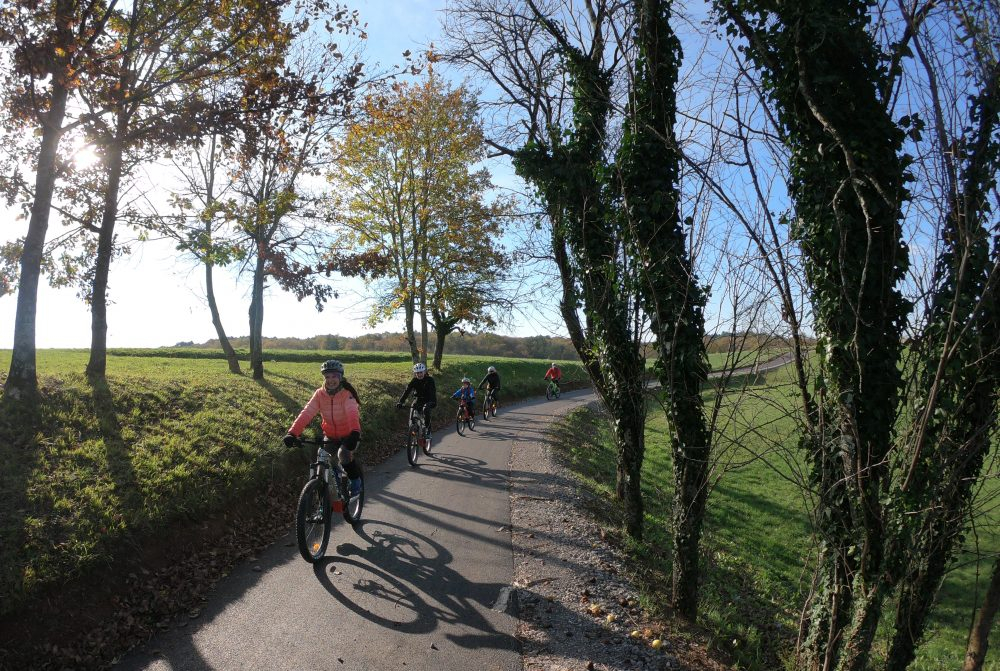 Cycling through green fields