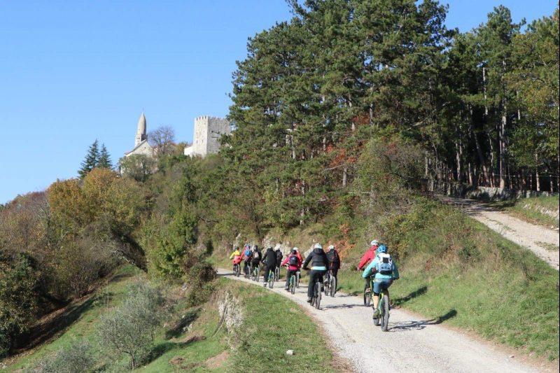 Mountain bike - MTB