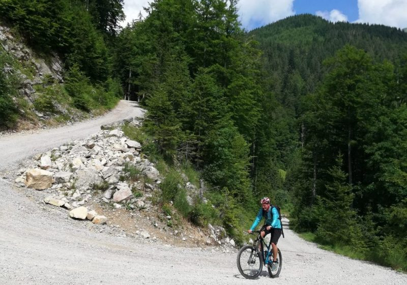 Mountain biking to pasture Sija