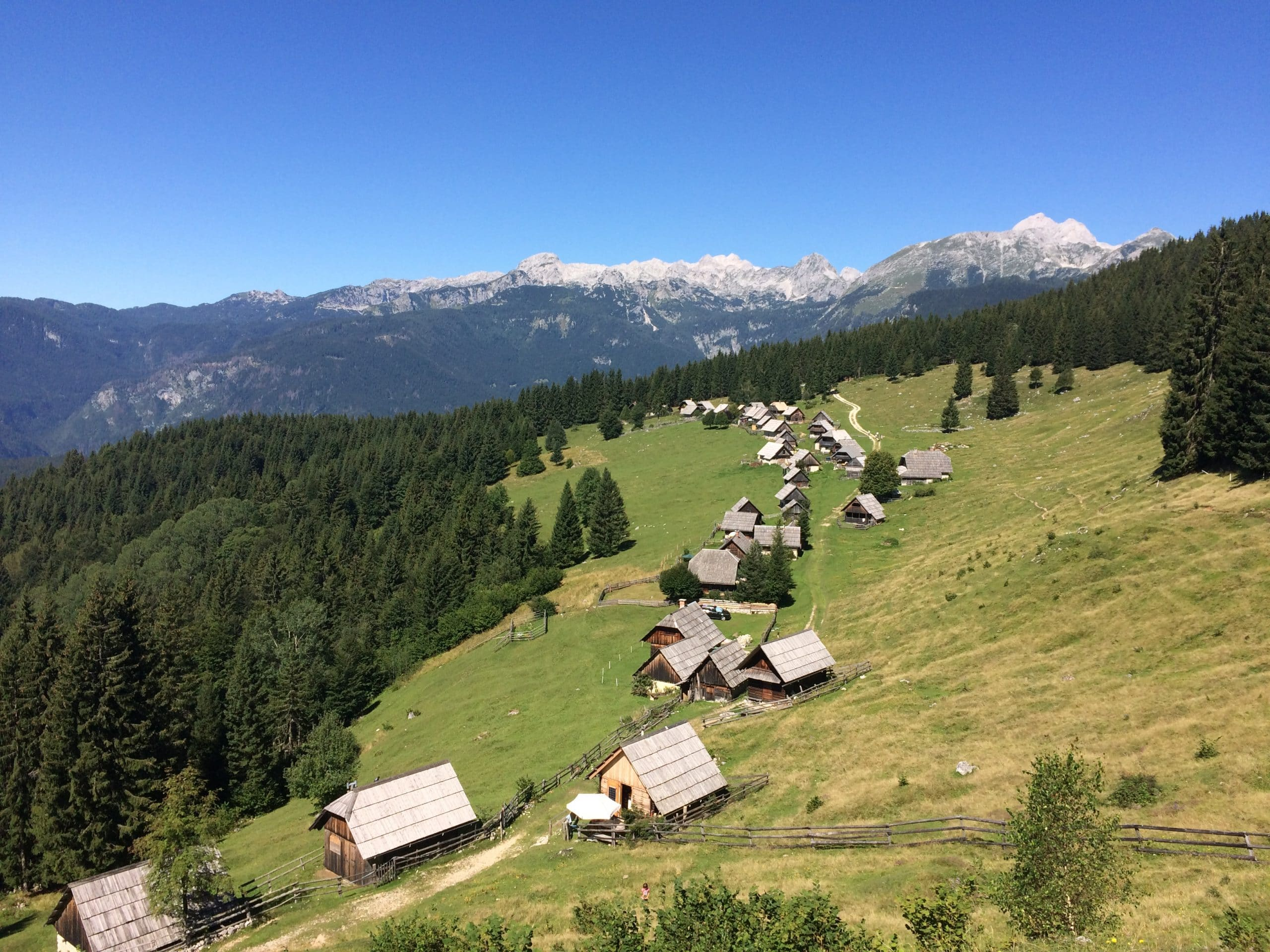 beautiful view of Zajamniki - Pokljuka in Slovenia