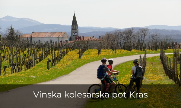 Kolesarjenje skozi vinograde