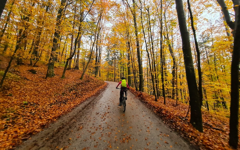 Bike tour Škofja Loka in autumn colours